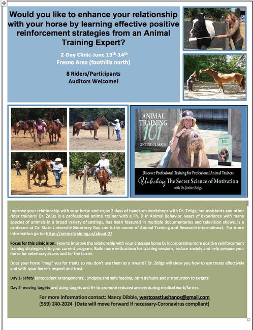 Horse Training Clinic